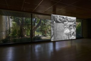 LONNIE VAN BRUMMELEN & SIEBREN DE HAAN by Ricardo Oliveira Alves