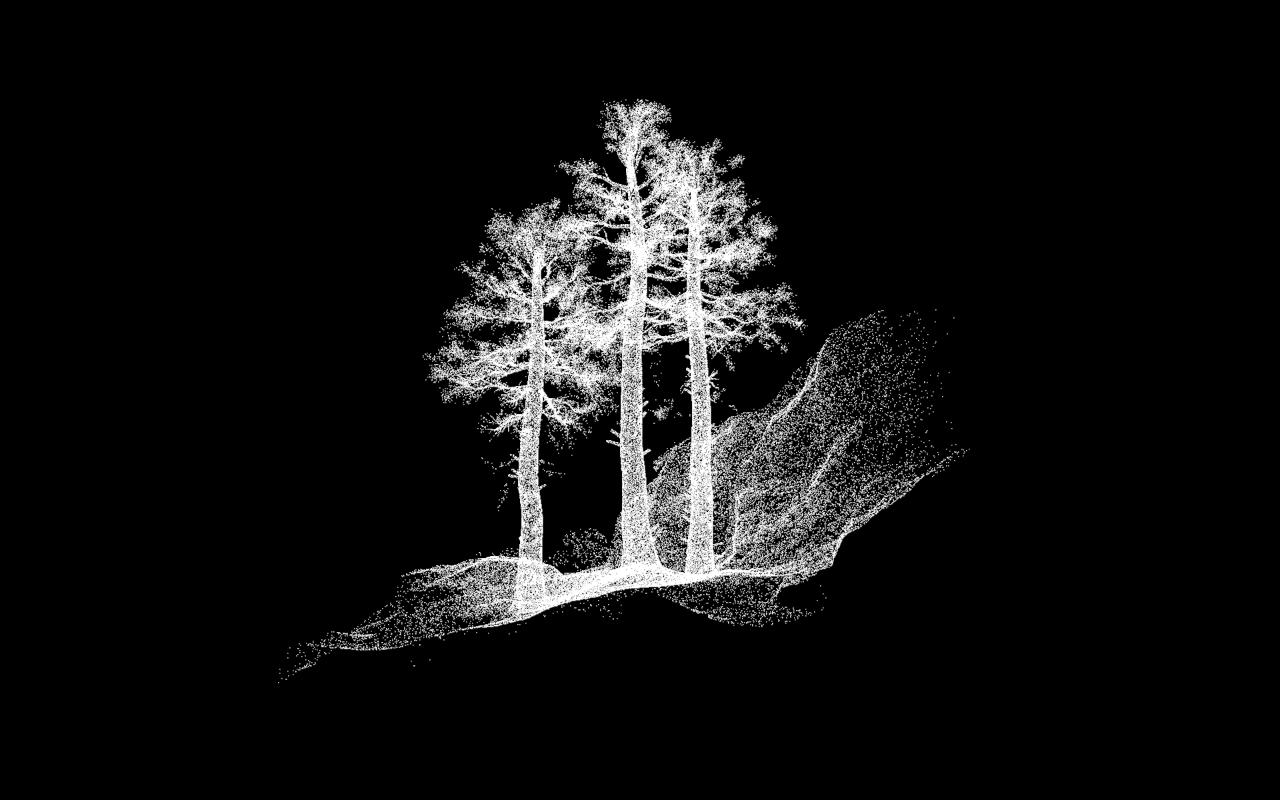 Deforestacion III. 2016. Fran Perez Rus