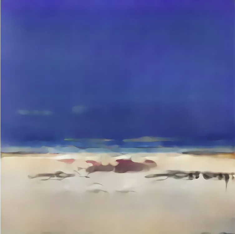 AICAN playa