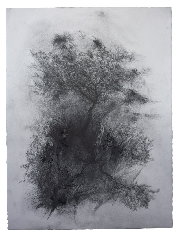 dmw-art-space-joris-vanpoucke-appearance-graphite-on-paper-76-x-57cm-2018