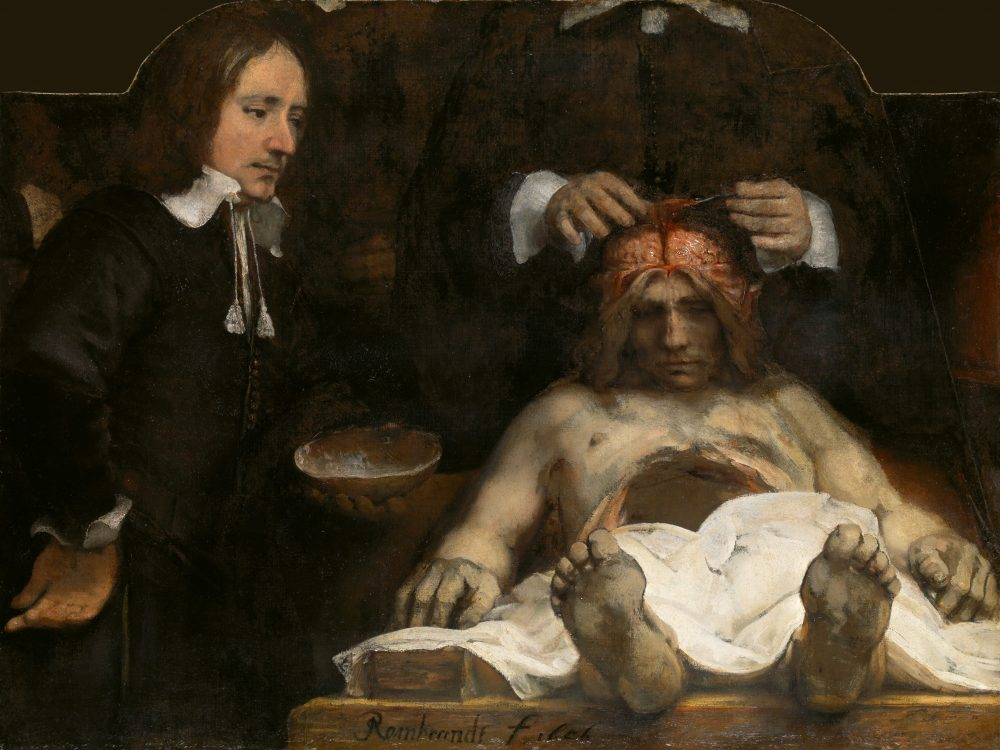 rembrandt_anatomia_grnd