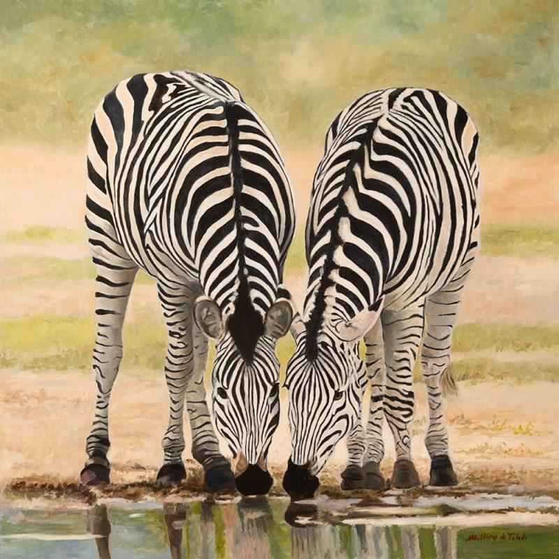 myriam-alvarez-de-toledo-cebras-bebiendo-nicolas-cortes-gallery